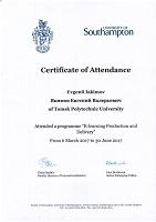 Сертификат_2017_E-learning